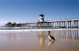 Top 5 summer road trips for the upcoming break