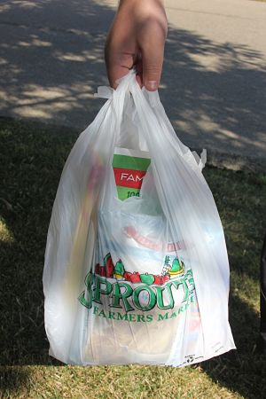 Ban on plastic grocery bags likely spreading statewide