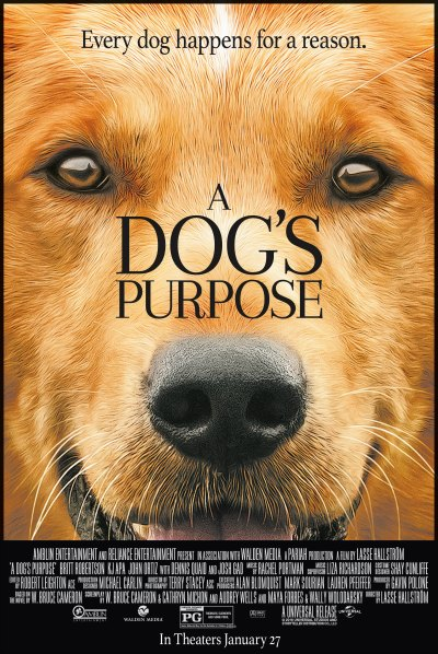 'A Dog's Purpose' falls short of delivery with controversial scene and lack of character chemistry