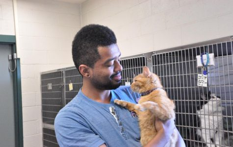 Pet adoption day finds homes for animals in need