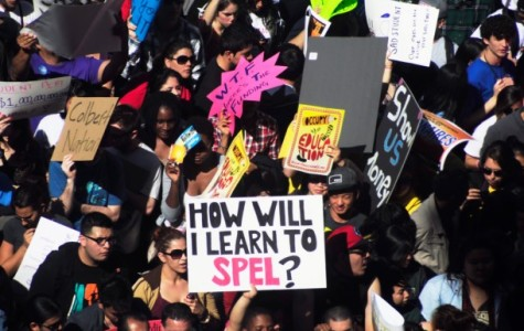 Thousands march in protest of cuts to higher education