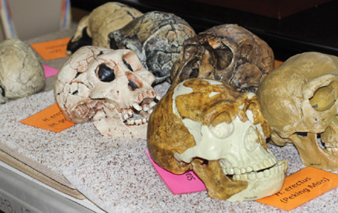 Anthropology department seeks to make education fun and exciting