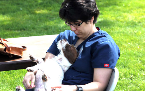 MacDuff, a terrier mix, spent a lazy hour communing with 24-year-old veterinary technician major, Lauren Vollucci, at the CRC pet adoption event on April 27. MacDuff is still available for adoption.