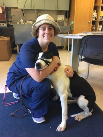 Vet Tech program prepares for pet adoption day