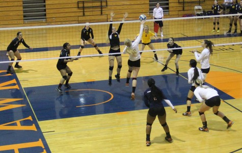 Volleyball team ends tournament on a high note