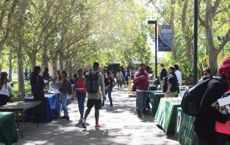 Students browse various university representatives at Transfer Day on Sept. 19.