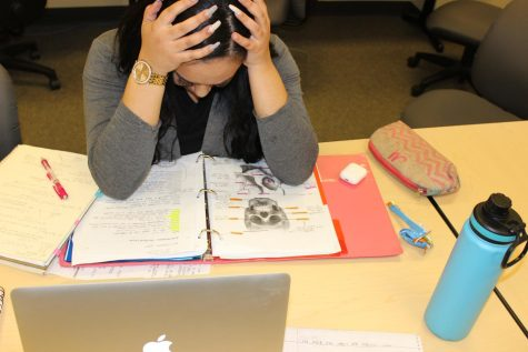 "Students are being burned out by the amount of work they do for school. While the World Health Organization states that burnout syndrome is a ""occupational phenomenon,"" students can feel like going to school is similar to working a job."