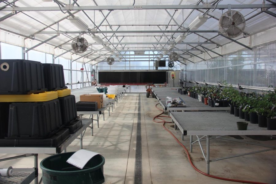 Greenhouse shifts to incorporate food production