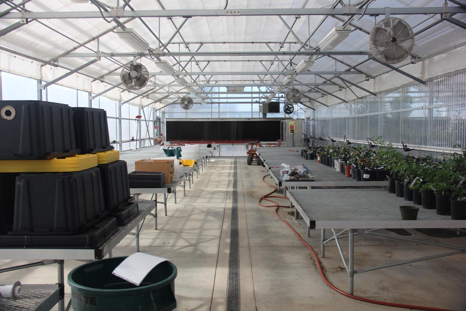 Due to a lack of students enrolling in the program that oversees the greenhouse, the Horticulture department and the Nutrition and Food department have teamed up and develop a Certificate of Proficiency in Plant-Based Nutrition and Sustainable Agriculture. This would also try to revive the greenhouse.