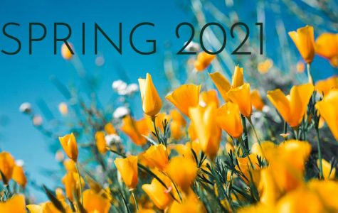 As we adapt to being online for the fall 2020 semester, the Los Rios Community College District announced that the spring 2021 semester will also be online.