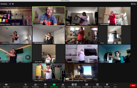 CRC Hawks Softball Coach Kristy Schroeder (outlined in green) hosted her weekly virtual conditioning class on Oct. 21. The team has been engaging in workouts via Zoom throughout the fall semester, with hopes of playing in the spring.